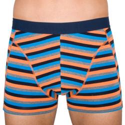 Pánské boxerky Stillo vícebarevné (STP-012)