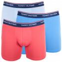 3PACK pánske boxerky Tommy Hilfiger viacfarebné (UM0UM00010 639)
