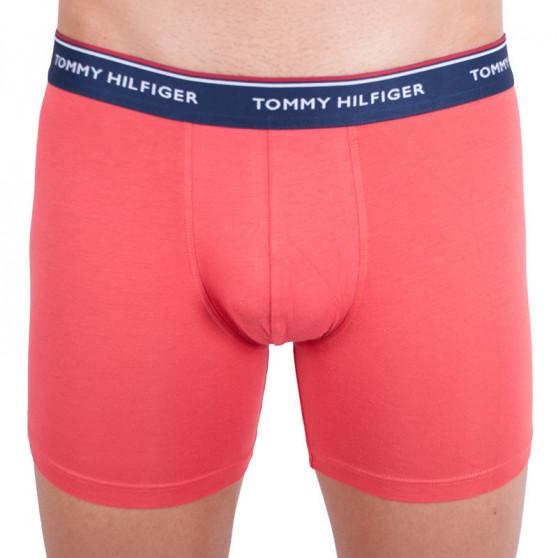 3PACK pánské boxerky Tommy Hilfiger vícebarevné (UM0UM00010 639)