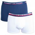 2PACK pánske boxerky Tommy Hilfiger viacfarebné (UM0UM00746 222)