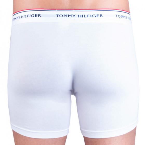 3PACK pánské boxerky Tommy Hilfiger vícebarevné (UM0UM00010 004)
