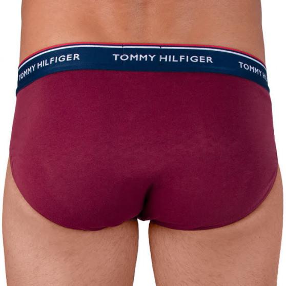 3PACK pánské slipy Tommy Hilfiger vícebarevné (1U87903766 096)