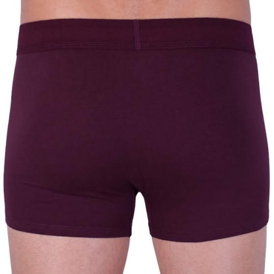 Pánské boxerky Calvin Klein červené (NB1678A-XP2)