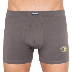 Pánské boxerky Andrie šedé (PS 5182b)