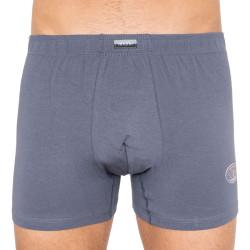 Pánské boxerky Andrie šedé (PS 5182e)