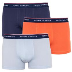 3PACK pánské boxerky Tommy Hilfiger vícebarevné (UM0UM00010 592)