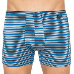 Pánské boxerky Andrie vícebarevné (PS 5434c)