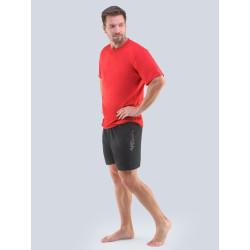 Pánské pyžamo Gino červeno/modré (79102)